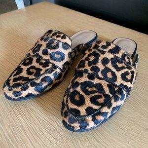 Leopard Print Mules